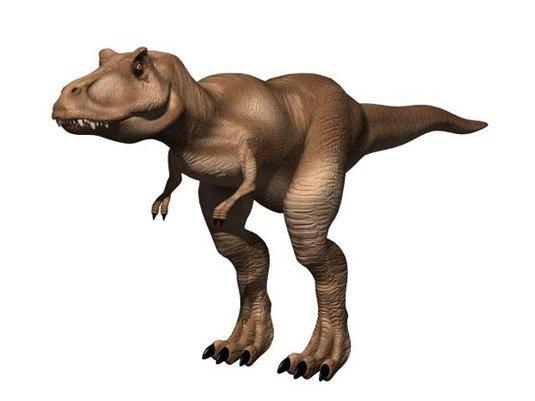 Free 3D models - T-Rex