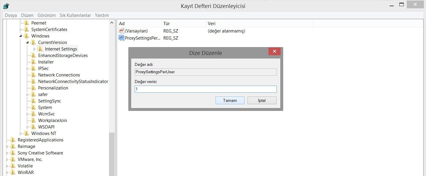proxy kayıt defteri