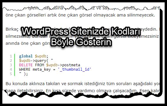 WordPress Sitenizde Kodları Böyle Gösterin