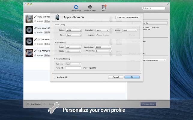 Any Video Converter Lite  Anvsoft Inc. ile ilgili görsel sonucu